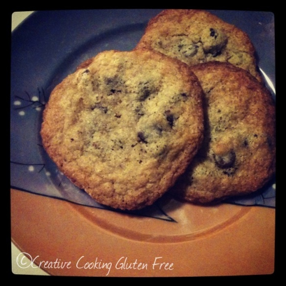 gluten free sugar free chocolate chip cookies
